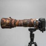 Nikon D500 i Sigma S 150-600mm